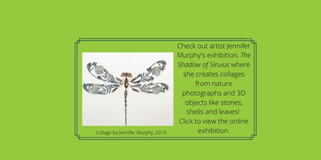 Check out artist Jennifer Murphy's exhibition, The Shadow of Siruius where she creates collages from nature photographs and 3D objects like stones, shells and leaves! Click to view the online exhibition.